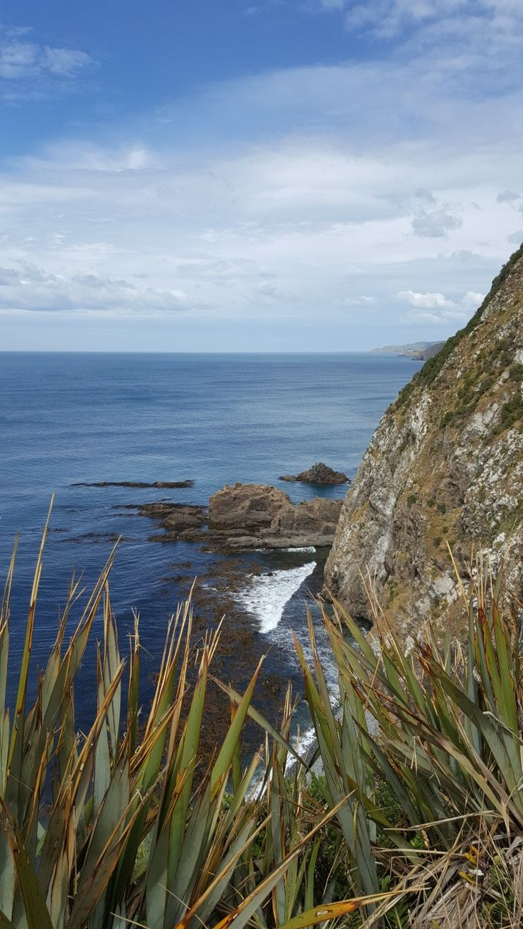 Rocky coast in the Catlins South Island NX