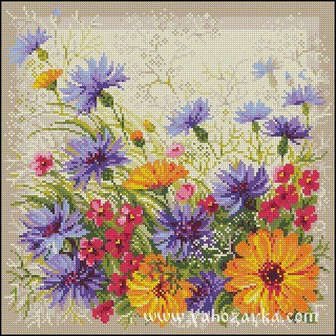 Вышивка крестом полевые цветы. Схемы вышивки крестом полевые цветы