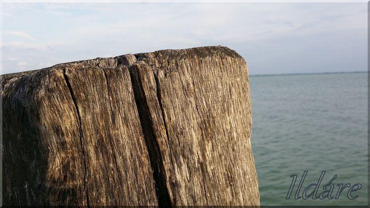 Fa cölöp a kikötőben