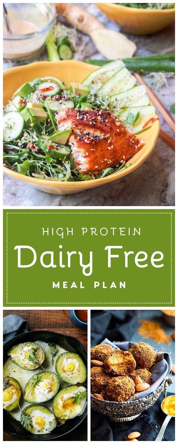 High Protein Dairy Free Meals