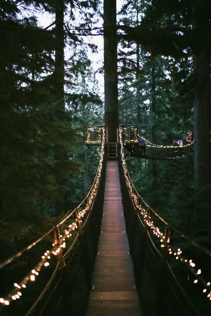 Capilano Suspension Bridge, all done up for Christmas. // Photos by Taylor and Elaine at their site, localwanderer.