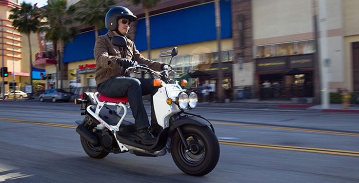 2017 Honda Ruckus Scooter Price Specs Review