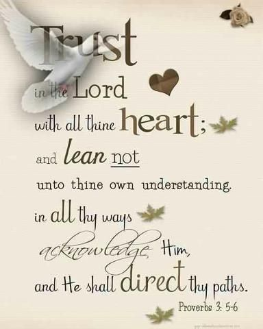 Trust in the Lord with all thine heart; and lean not unto thine own understanding. In all thy ways acknowledge him, and he shall direct thy paths. (Proverbs 3:5, 6 KJV)
