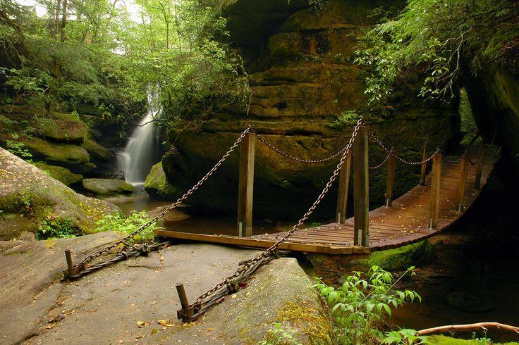 Dismals Canyon, Alabama - Must visit