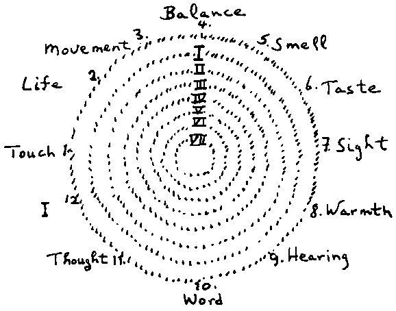 Development of the Senses