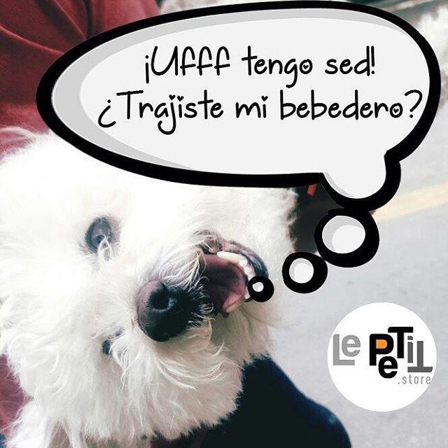 🐶 ¿Te gusta salir con tu perro? 💦 Lleva siempre contigo un #bebedero portátil por si le da hambre o sed 🎁 Cómpra aquí  #LePETitStore ➡ Link en Bio  ☎ 304 382 9963    #amorperruno #perrobogota #perrosdeinstagram #quieroamiperro #quieroamiperrofeliz #mascota #quieroamimascota #tiendaderegalos #accesoriosmascotascolombia #Bebedero