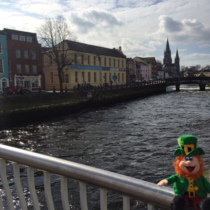 Conor is back home and he can't wait to jump into his pint of Beamish on St. Patrick's Day. #WheresConor