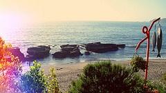Playa de Cocholgue, Chile.