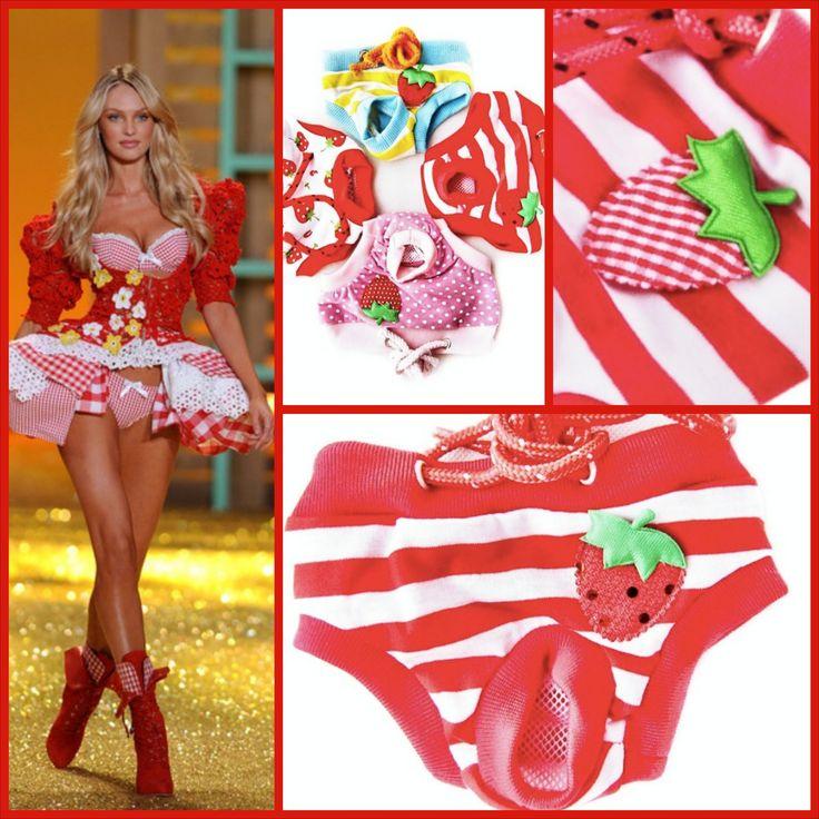 Köpek Külotları Köpek Regl Dönemi köpek kıyafetleri köpek modası köpek giyim dog clothes dog underwear dog period Dog Lingerie www.kemique.com