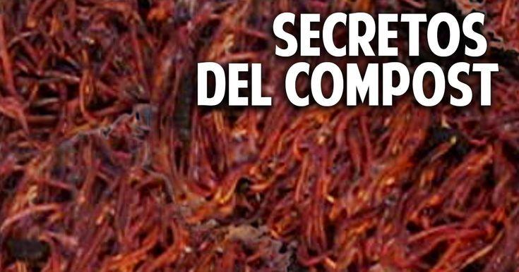 Cosas del Jardin: 10 secretos que debes conocer sobre compost y humus de lombriz @cosasdeljardin
