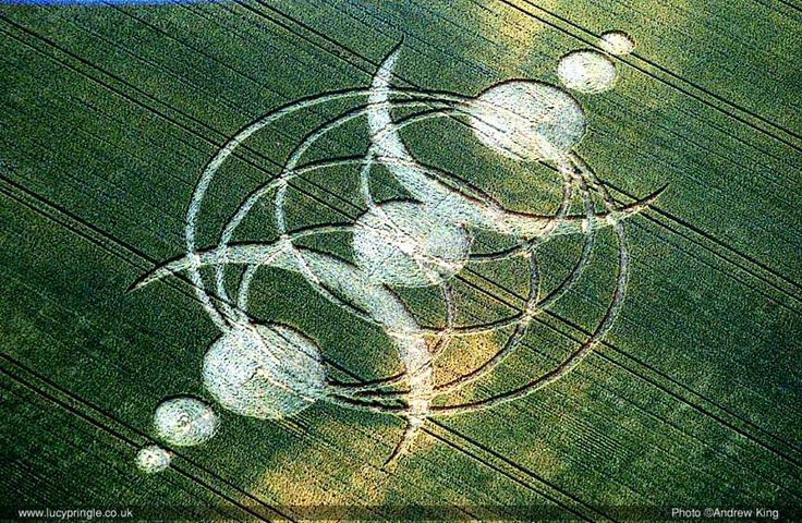 One of hundreds of Crop Circles that appear in only a few hours of time all over the world every year. uk2005bb