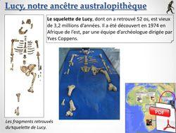 Préhistoire - Lucy, notre ancêtre australopithèque