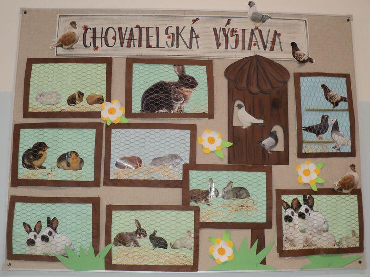 Výstava malých chovatelů