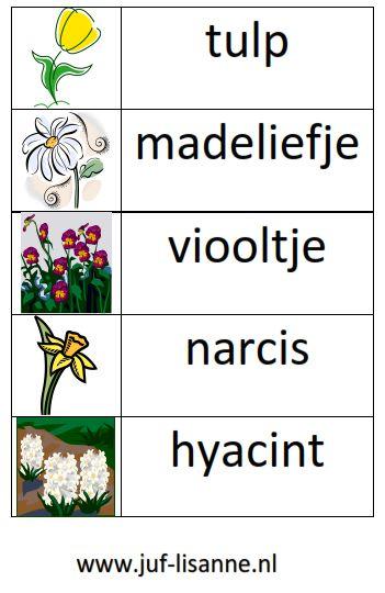 www.juf-lisanne.nl Stempelkaart bloemen thema lente.