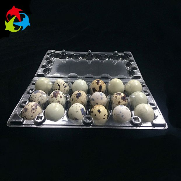 Custom Clear Disposable Plastic Clamshell Quail Egg Cartons For Sale Https App Alibaba Com Dynamiclink Touchid 60751421233 Quail Eggs Egg Carton Quail