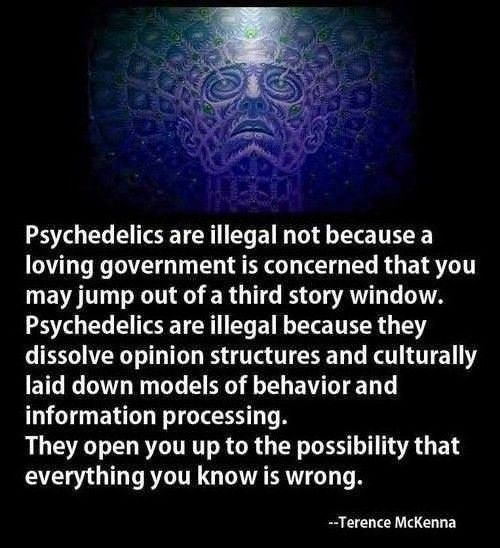 They open up the possiblity that everything you know is wrong.... Psychedelics.... so true, after a fair share of experimenting this summer, they have deffently opened my mind