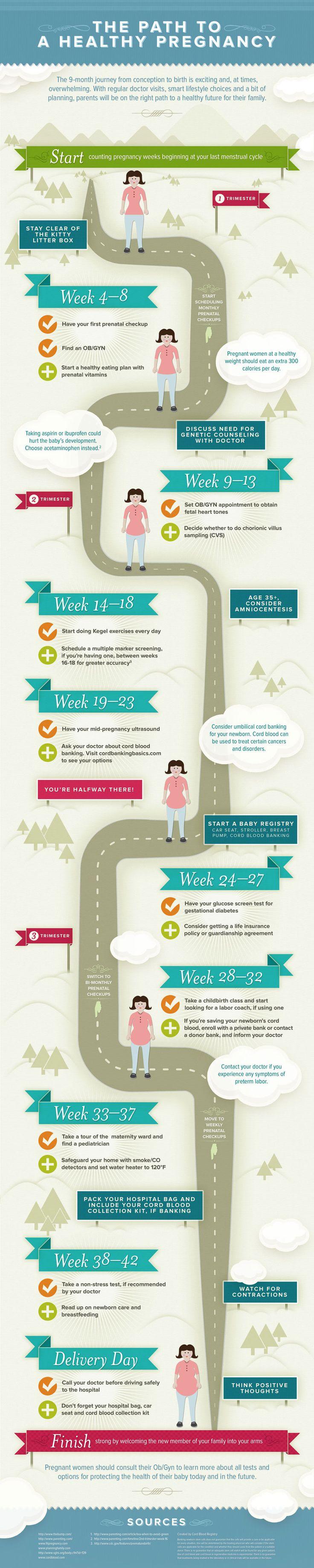 El proceso de un embarazo saludable #infografia #infographic #health