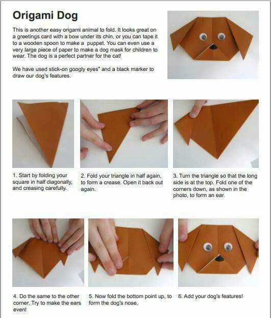 Koira origami