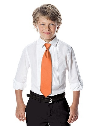 After Six Boy's Slider Tie (Clemente)