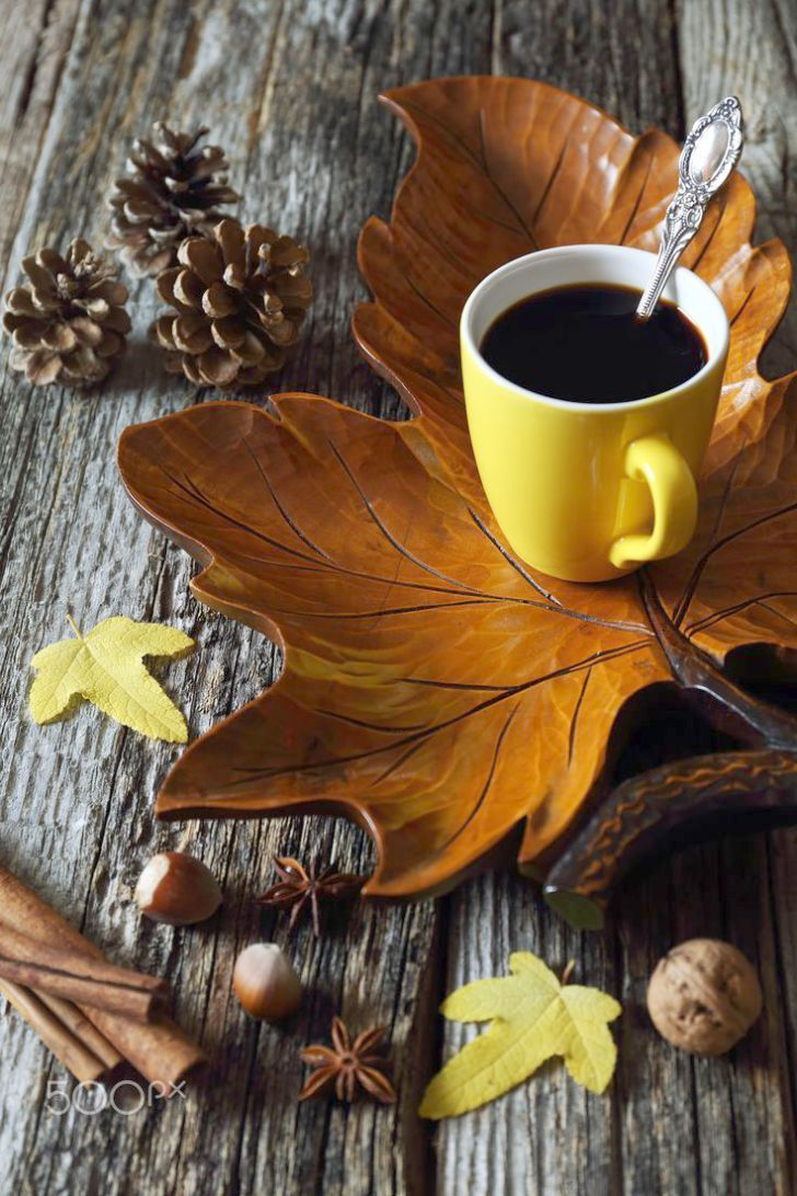 Coffee Shops Near Me San Antonio Rather Coffee Meets Bagel Free Beans Concerning Coffee Bean Menu Nutrition Coffee Cups Fresh Coffee Beans Black Coffee