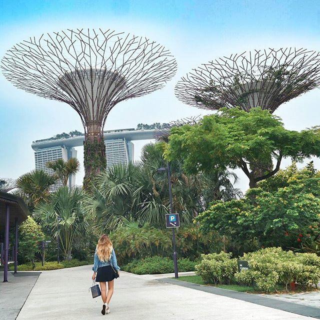 Welcome To Singapore with #misswalkingaway E c'è una cosa che non smetterò mai di fare: esplorare. Non importa il fuso orario, o il caldo appiccicoso che ci fa compagnia, la cosa più bella è viaggiare. Benvenuti nel mondo di Avatar e dei suoi alberi della vita, dicono, che di sera, l'atmosfera, sia surreale, proprio come essere all'albero delle anime, fra luci danzanti e musica delicata. Mi hanno convinta, proverò a tornare, in questi giorni, al tramonto. #nx30