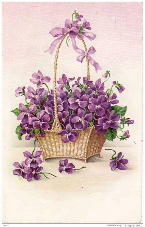(via Old books, cards, prints♥ / Vintage violets postcard)