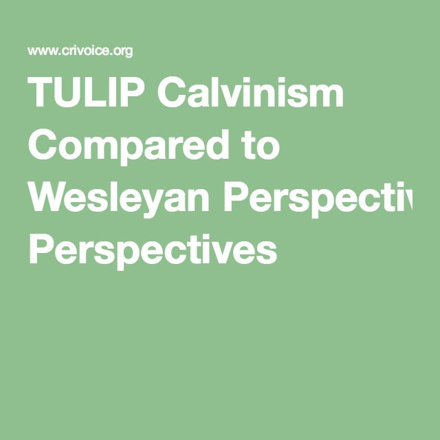 TULIP Calvinism Compared to Wesleyan Perspectives