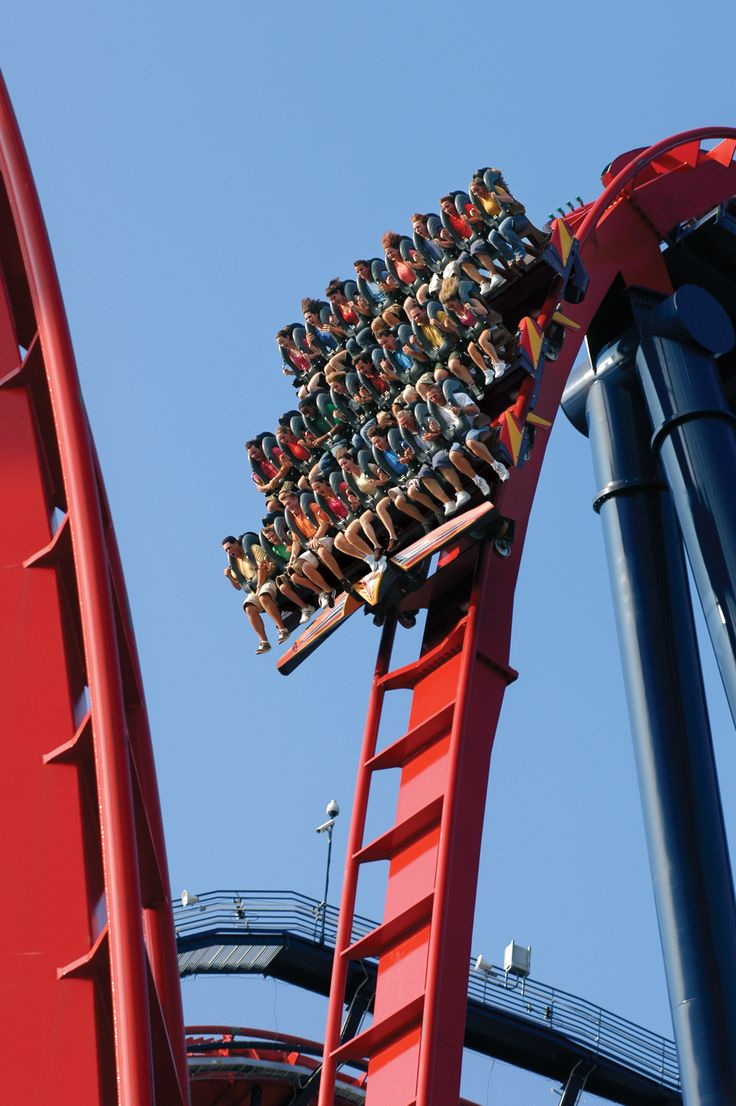 SheiKra - sky above, earth below and nothing but a massive thrill in between.