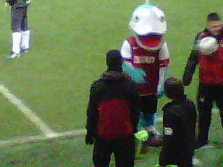 Fleetwood Town's mascot Captain Cod (FTFC v Barrow - January 2012)