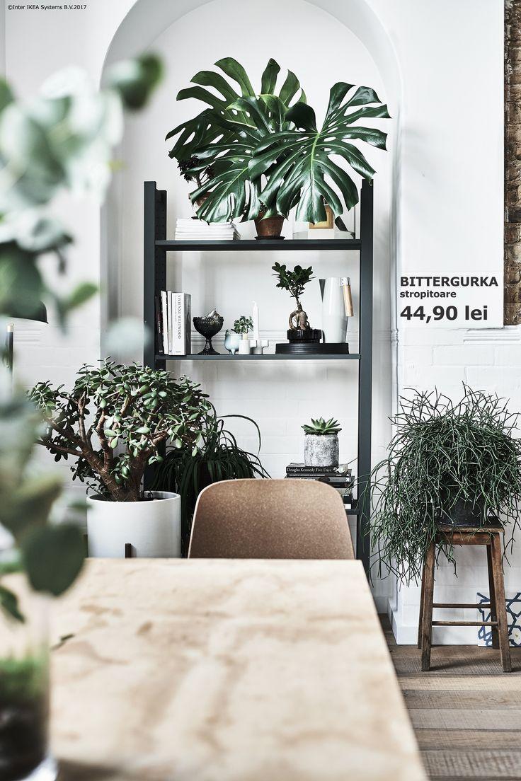 Găsește cel mai luminat spațiu din casă și transformă-l într-o zonă verde. Astfel, plantele vor avea lumină din plin, iar tu un loc perfect pentru relaxare.