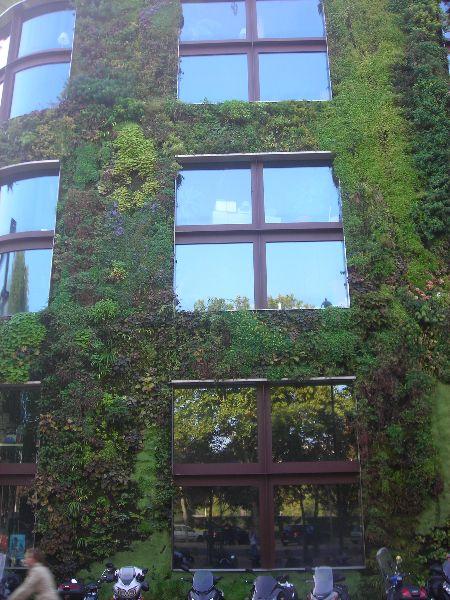 A zöld falak egyik előnye, hogy megkötik a mérgező gázok egy jelentős részét, növelik a páratartalmat és csökkentik a porszennyezést.  http://www.globalgarden.hu/szolgaltatasaink/fuggoleges-kertek-zold-falak/