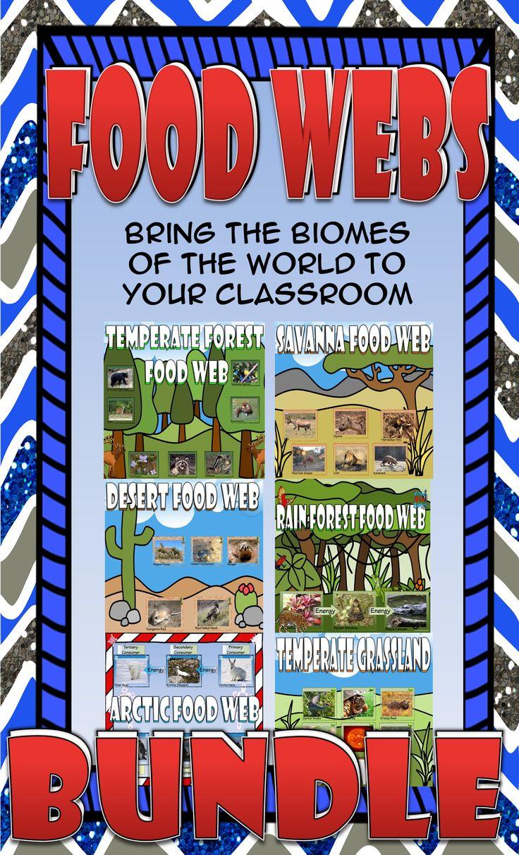 Food Chain and Food Web Biome Card Sort Bundle Teaching