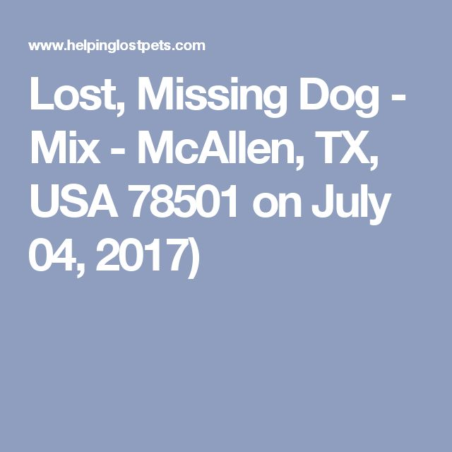 Lost, Missing Dog - Mix - McAllen, TX, USA 78501 on July 04, 2017)