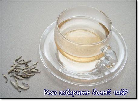 как заварить белый чай