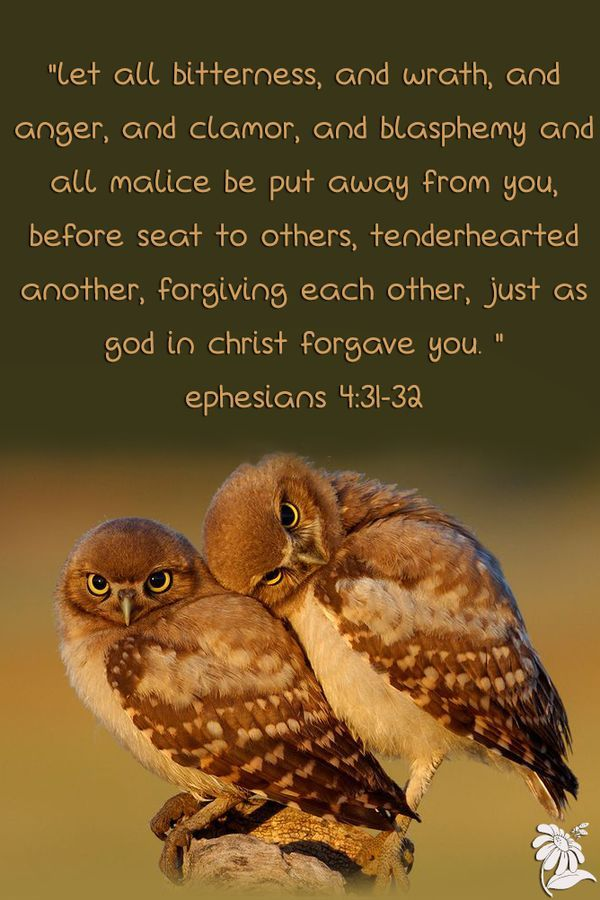 Bible Forgiveness
