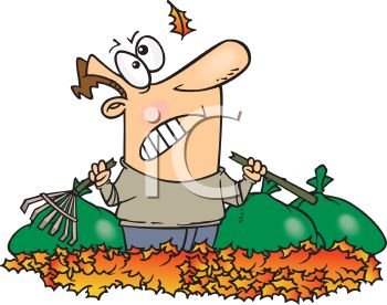 Royalty Free Clipart Image of a Man With a Broken Rake Standing in a Pile of Leaves