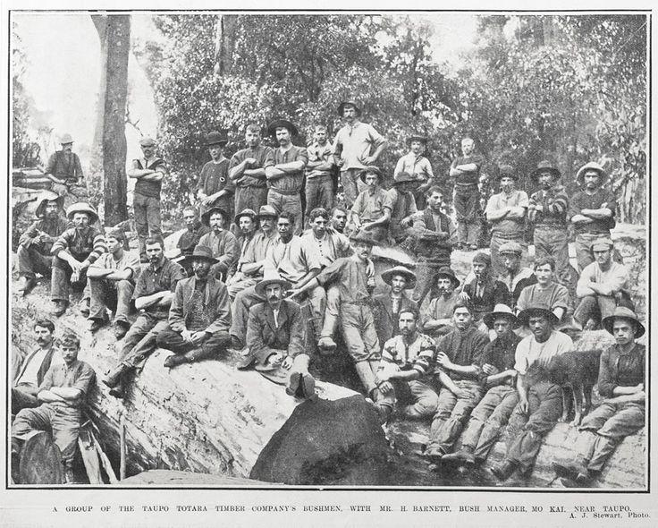 A GROUP OF THE TAUPO TOTARA TIMBER COMPANY'S BUSHMEN, WITH MR. H. BARNETT, BUSH MANAGER, MO KAI, NEAR TAUPO