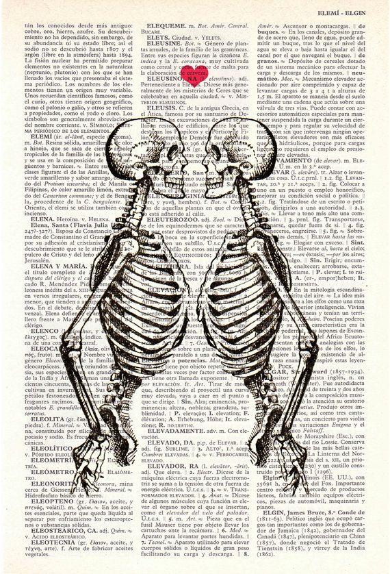 Resultado de imagem para enfermeira beijando esqueleto