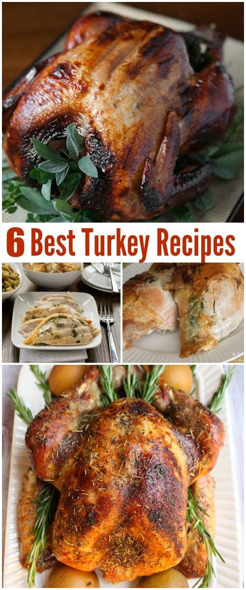 6 best turkey recipes - perfect for Thanksgiving, Christmas or holiday entertaining. Delicious family recipes for dinner or lunch.
