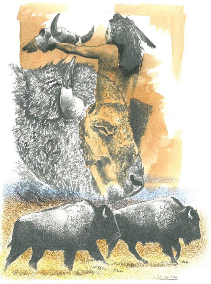 bison et indiens | Indien et bison par Dominique Gall artiste peintre animalier