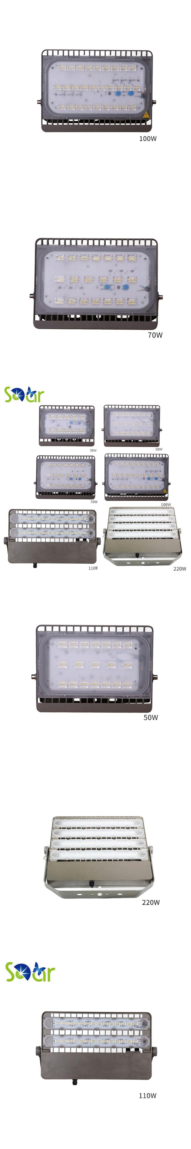Ultra Bright led flood light 30W 50W 70W 100W 110W 220W SMD 2835 Waterproof IP67 AC185-265V Garden Spotlight Outdoor Floodlight