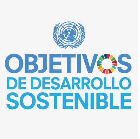 El 25 de septiembre, los países tendrán la oportunidad de adoptar un conjunto de objetivos globales para erradicar la pobreza, proteger el planeta y asegurar la prosperidad para todos como parte de una nueva agenda de desarrollo sostenible. Cada objetivo tiene metas específicas que deben alcanzarse en los próximos 15 años. Para alcanzar estas metas, …