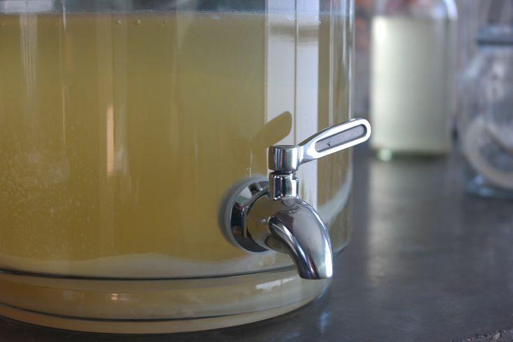 Jun gefermenteerde drank van groene thee met honing / variant op de kombucha ( http://www.kefirwinkeltje.nl/jun/ )