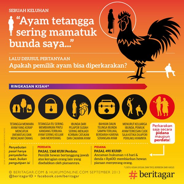 Ayam melukai tetangga, pemiaranya bisa dihukum – Beritagar