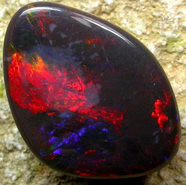 QUALITY BLACK OPAL STONE -N2 - 3.70 CTS [s1496 ] -  This is a natural stone mined in Lightning ridge-the home of black opal. It is well polished and  showing good fire of BLUE GREEN ORANGE RED -  weight  3.70 cts app -  size 15 x 10 x 3 mm app