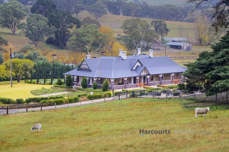 Auction 17th June, 2017 @ 10.30am @ Stirling USP  #SouthAustralia #OakBank #ForSale #HorseProperty #RealEstate