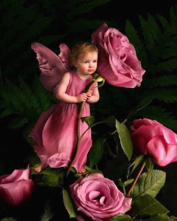 Rose fairy.....She makes them bloom on a early summer's day . Their sweet smells fill the air and brighten your life