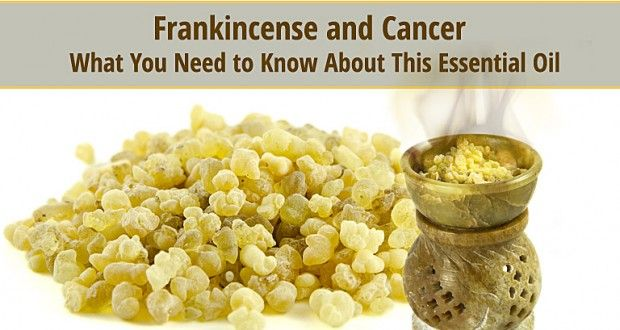 Frankincense-2  Here is a source to find frankincense in a variety of forms http://edge.affiliateshop.com/public/AIDLink?AID=125478&Redirect=/products/frankincense-resin/profile