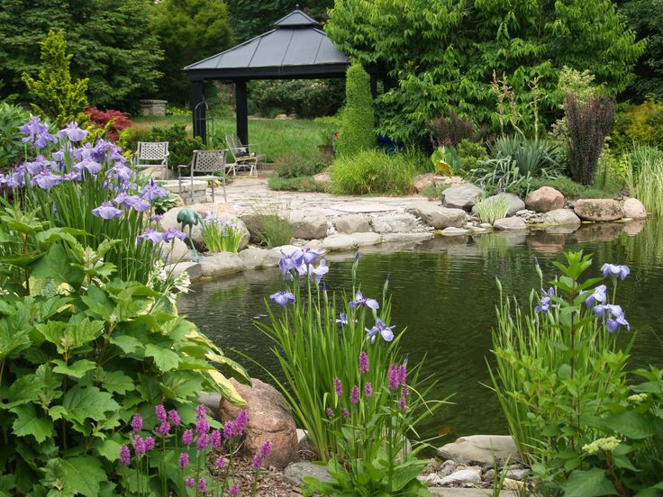 35 best images about natural looking shade gardens on for Koi pond shade ideas
