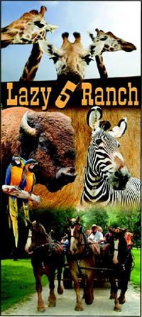 Lazy 5 Ranch. Best drive in animal feeding place ever